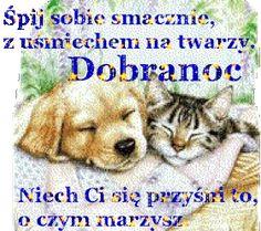 Wierszyki i gify na dobranoc: Gify na dobranoc kotki Animals And Pets, Dogs, Behance, Polish, Quotes, Enamel, Pet Dogs, Doggies, Manicure
