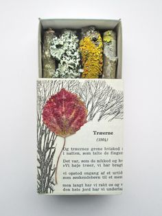 mano kellner, art box nr 262, træerneu use half box on top of other box w poem