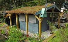 Jean Vernon explains how to make your own eco-friendly garden shed with   minimal outlay.