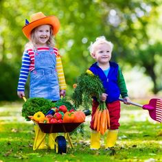 Help get your little one involved with gardening with these gardening books for toddlers. These children's gardening books will help them learn all spring!
