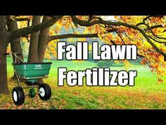 Fall Lawn Fertilizer - YouTube