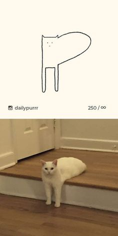 Times 'Stupid Cat Drawings' Made Everyone Laugh With How Accurate They Were – Cat Supplies Dumb Cats, Stupid Cat, Funny Cats And Dogs, Crazy Cats, Funny Kitties, Adorable Kittens, Kitty Cats, Big Cats, Funny Animal Quotes