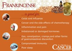 Today is the Epiphany, the day that the Magi visited the baby Jesus and brought the gifts of frankincense, gold, and myrrh. Click through to read on to learn all about the incredible anti-inflammatory and healing properties of frankincense! Article by Ty Bollinger. Please re-pin to share with your family & friends! Together we are changing the world and saving lives everyday! Join us for much more great information on The Truth About Cancer! <3