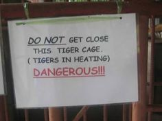 These horny tigers. | 23 Hilarious Notices From India That Will Definitely Get Your Attention