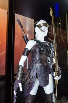 Wonder Woman film costumes shine at NYCC, along with a beloved throwback - Polygonclockmenumore-arrow :