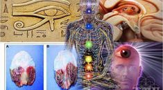 5 Ways to Decalcify Your Pineal Gland Regardless Of Your Age