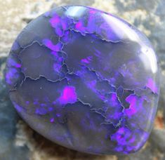 62.20 CTS BLACK OPAL ELECTRIC BLUE CUT STONE D1118  BLACK OPAL  FROM LIGHTNING RIDGE NEW SOUTH WALES AUSTRALIA FROM OPALAUCTIONS.COM