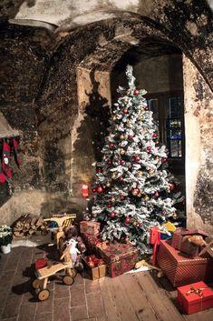 Ich liebe die Adventszeit in Graz sehr, mit den vielen Weihnachtsmärkten, jeder für sich besonders und einen Besuch wert. Christmas Tree, Inspiration, Holiday Decor, Blog, Home Decor, Advent Season, Graz, Vacations, Love