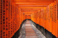 Always reminds me of 'Memoirs of a Geisha' #travel #Japan