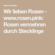 Wir lieben Rosen - www.rosen.pink: Rosen vermehren durch Stecklinge