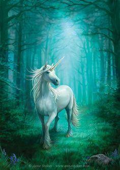 Art by Anne Stokes (Ironshod) Unicorn Fantasy Myth Mythical Mystical Legend Licorne Enchantment Einhorn unicorno unicornio Единорог jednorožec Eenhoorn yksisarvinen jednorożca unicórnio Egyszarvú Kirin Unicorn And Fairies, Unicorns And Mermaids, Unicorn Art, Magical Unicorn, Unicorn Fantasy, Beautiful Unicorn, White Unicorn, Unicorn Painting, Unicorn Poster