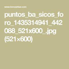 puntos_ba_sicos_foro_1435314941_442088_521x600_.jpg (521×600)