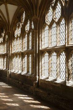 Hogwarts: A Photography Book - wichtcraft and wizardry - Wattpad San Myshuno, Mundo Harry Potter, Images Harry Potter, Aesthetic Light, Brown Aesthetic, Images Vintage, Slytherin Aesthetic, Hogwarts Houses, Chiaroscuro