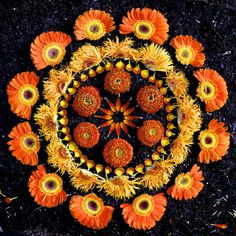 "Beautiful Mandalas Made from Nature by Kathy Klein - My Modern Metropolis Arizona-based artist Kathy Klein uses a variety of organic materials to produce a series of eye-catching mandalas referred to as Danmalas—a portmanteau of the Vedic Sanskrit words ""dān"" and ""mālā"" which respectively mean ""the giver"" and ""garland of flowers."" Each piece in her ongoing collection boasts a brilliant sense of geometric symmetry and energetic life."