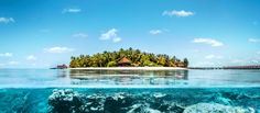 Waves, Outdoor, Snorkeling, Vacation Package Deals, The Maldives, Diving, Paradise, Outdoors, Ocean Waves
