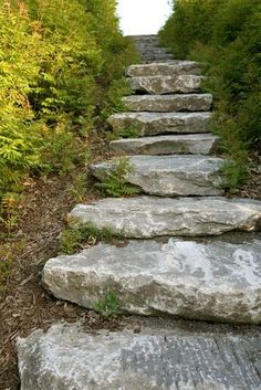I need this leading to my side yard garden. How to Do Stone Landscaping Steps Stone Landscaping, Hillside Landscaping, Landscaping With Rocks, Landscaping Ideas, Landscape Stairs, Landscape Design, How To Make Stairs, Steep Gardens, Rock Steps