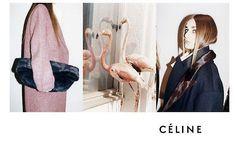 New Celine ad campaign