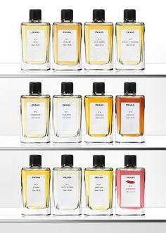 Prada Perfume | House of Beccaria#