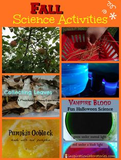 Fall Science Activities - science ideas for apples, leaves, Halloween, and exploring outside from Inspiration Laboratories