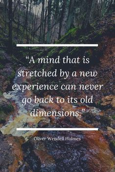 """A mind that is stretched by a new experience can never go back to its old dimensions."" - Oliver Wendell Holmes 