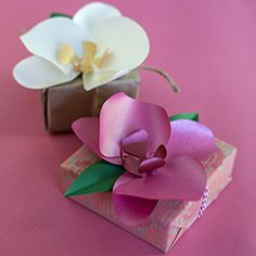 Make this simple paper orchid for a gift topper, to wear or to decorate an event. Printable template and tutorial included