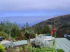Big Sur Big Sur California And Vacation Rentals On Pinterest