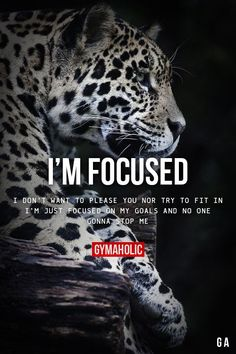 I'm Focused. I don't want to please you nor try to fit in. I'm just focused on my goals and no one gonna stop me.