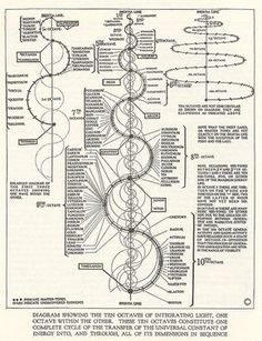All sizes | Diagram Showing the Ten Octaves of Integrating Light, One Octave Within The Other. These Ten Octaves Constitute One Complete Cycle of the Transfer of the Universal Constant of Energy Into, And Through, All of Its Dimensions in Sequence | Flickr - Photo Sharing!