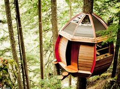 Discover the most amazing cabins in the world! design cabins, huts perched atop a tree, huts on the water or transparent cabins, they have us all stunned.