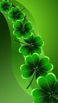 Shamrocks wallpaper by - - Free on ZEDGE™ Flower Phone Wallpaper, Green Wallpaper, Butterfly Wallpaper, Cellphone Wallpaper, Colorful Wallpaper, Iphone Wallpaper, Beautiful Flowers Wallpapers, Beautiful Nature Wallpaper, Beautiful Roses