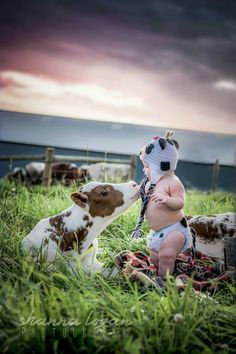 Baby with cows