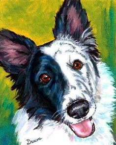 Border Collie Dog Art Original Painting by Dottie Dracos 8x10 on Green