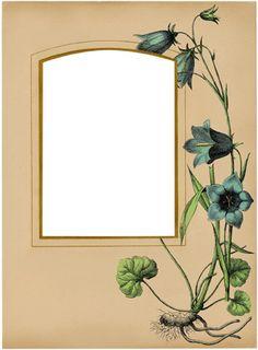 Gorgeous Antique Album Pages Kit! TGF Premium - The Graphics Fairy