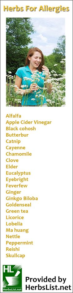 Herbs you can use to reduce the symptoms of allergies and hayfever- what a list!