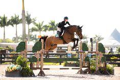 Horse Photos, Horse Pictures, Cute Horses, Beautiful Horses, English Horses, Show Jumping Horses, Equestrian Girls, Bays, Horse Stuff