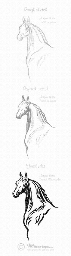 Morgan Horse Graphic Art Design by Joni Solis of Horse-Logos.com Final art will be available soon.