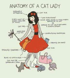 Anatomy of a cat lady... ~D~
