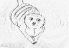 DeviantArt: More Artists Like meerkat sketchs by zimaro