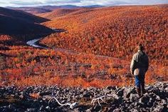 'Ruska' Autumn colors in Utsjoki, Lapland, Finland Lappland, Arctic Circle, What A Wonderful World, Helsinki, Places Around The World, Wonders Of The World, Places To Go, Beautiful Places, National Parks