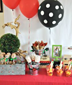 """Photo 2 of 20: Rocks and Lady Bugs / Birthday """"Tahlia's 9th Birthday""""   Catch My Party"""