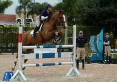 15 Riding Tips from George Morris | Practical Horseman