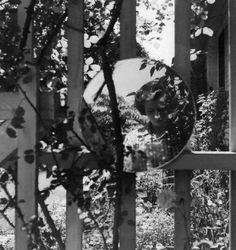 the street photoghrapher vivian maier self portrait. Best Street Photographers, Famous Photographers, Vivian Maier Street Photographer, Vivian Mayer, Street Photography, Art Photography, Foto Art, Chicago, Through The Looking Glass