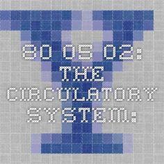 80.05.02: The Circulatory System: