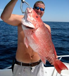 #red_snapper