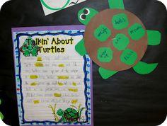 Turtle Verbs, blog source:  Step Intor Second Grade (Amy Lemons)