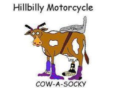 cow a socky -- Oldie but a goodie