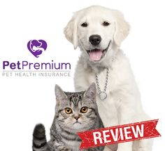 Pet Insurance Reviews