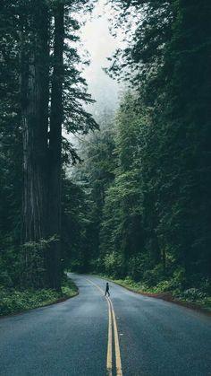 icu ~ Lugares assim me confortam… – Iphone Background in 2019 Tumblr Wallpaper, Wallpaper Backgrounds, Cartoon Wallpaper, Wallpaper Desktop, Girl Wallpaper, Disney Wallpaper, Forest Wallpaper, Wallpaper Quotes, Natur Wallpaper