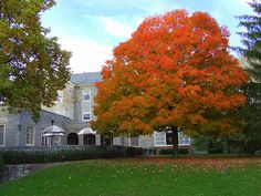 Clawson Hall Fall Colors at Miami University (Oxford Ohio)