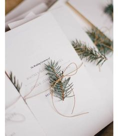 I love these gorgeous winter wedding invitation ideas! So simple, these minimalist wedding invitations would be beautiful for a rustic winter wedding. Evergreen Wedding, Pine Cone Wedding, Evergreen Forest, Wedding Flowers, Wedding Day, Diy Wedding, Luxury Wedding, Trendy Wedding, Wedding Table